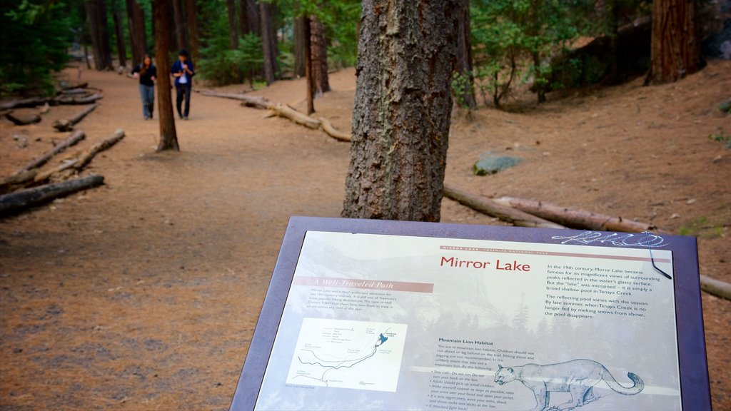 Yosemite National Park featuring forests and signage
