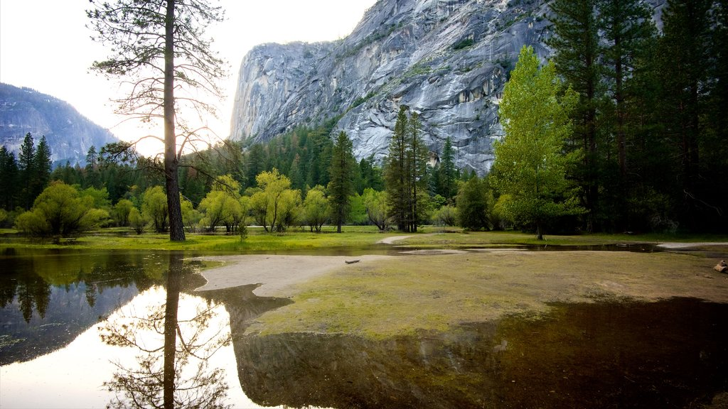 Yosemite National Park which includes a lake or waterhole, tranquil scenes and mountains