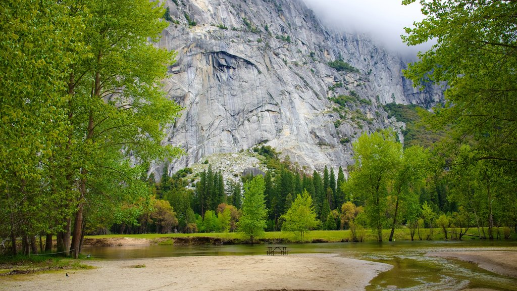 Yosemite National Park showing a river or creek and tranquil scenes