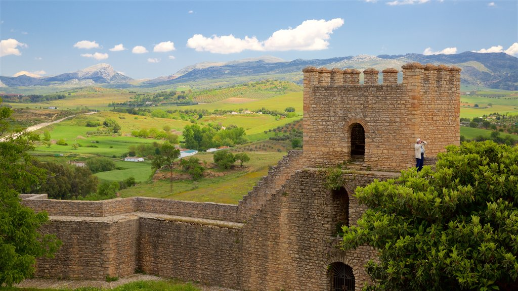 Ronda featuring heritage elements, landscape views and farmland