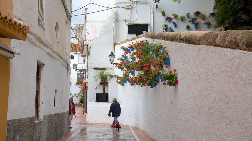 Marbella showing street scenes