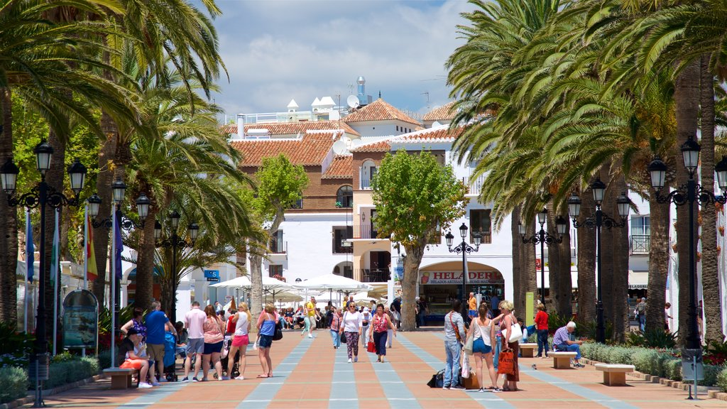 Balcon de Europa featuring street scenes and tropical scenes as well as a large group of people