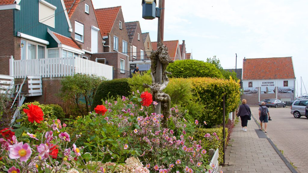 Volendam which includes street scenes and wildflowers