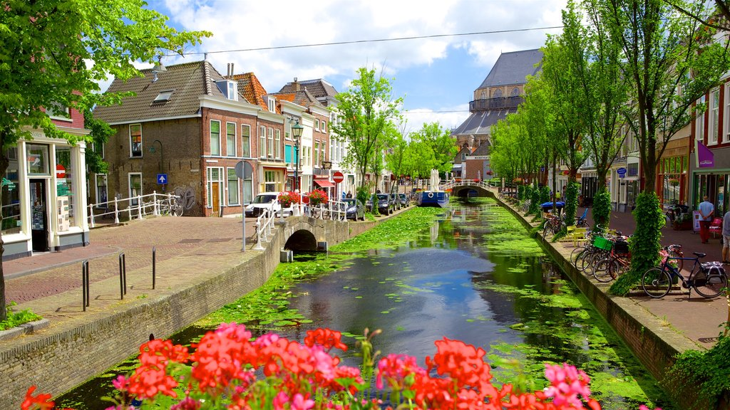 The Hague featuring street scenes, a small town or village and a river or creek