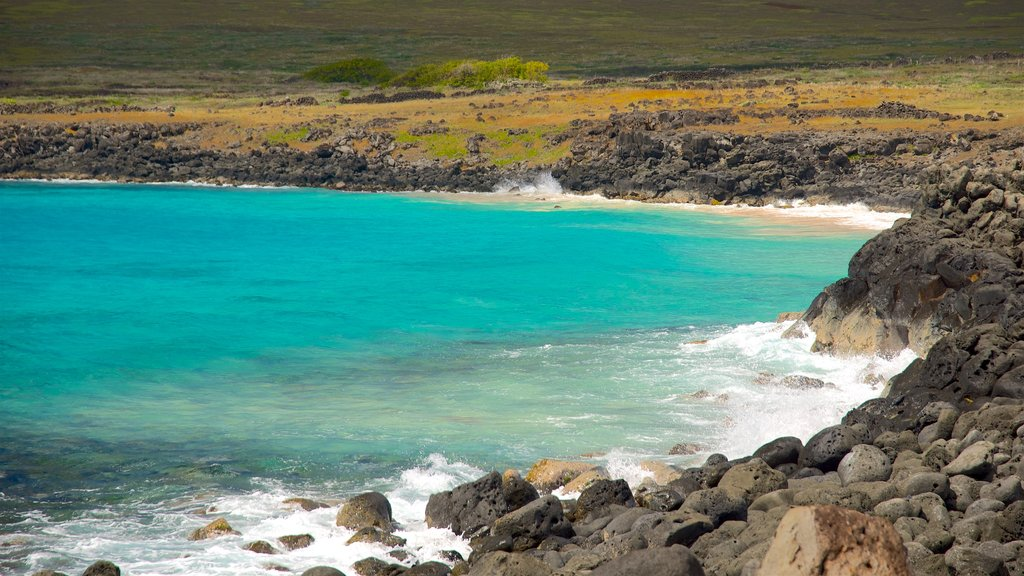 Easter Island which includes rugged coastline and general coastal views