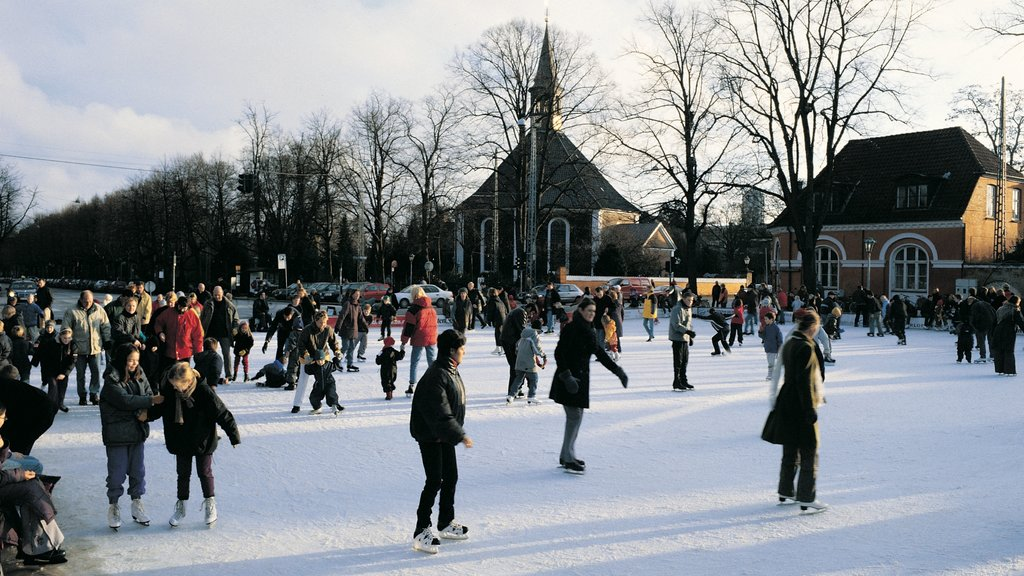 Frederiksberg featuring ice skating and snow as well as a large group of people