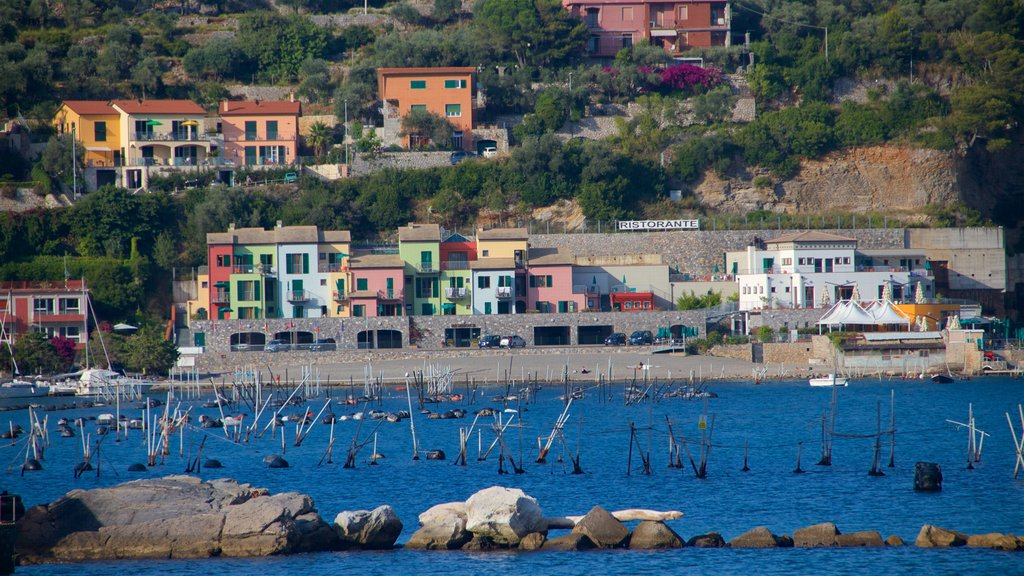 Portovenere featuring a coastal town and general coastal views