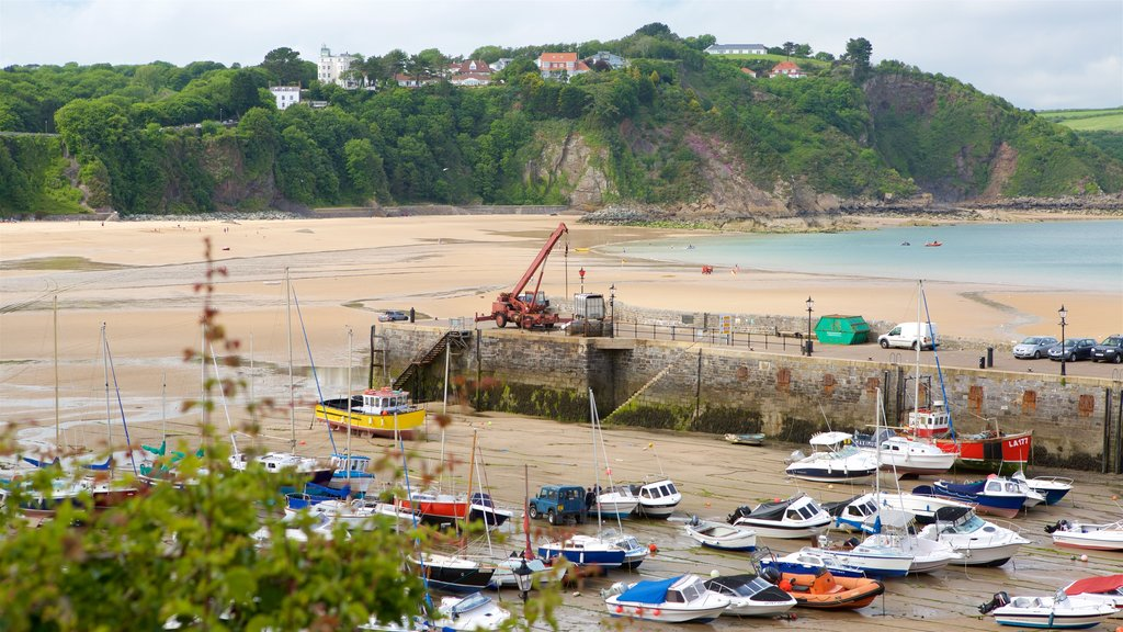 Tenby featuring a coastal town, rugged coastline and a bay or harbor