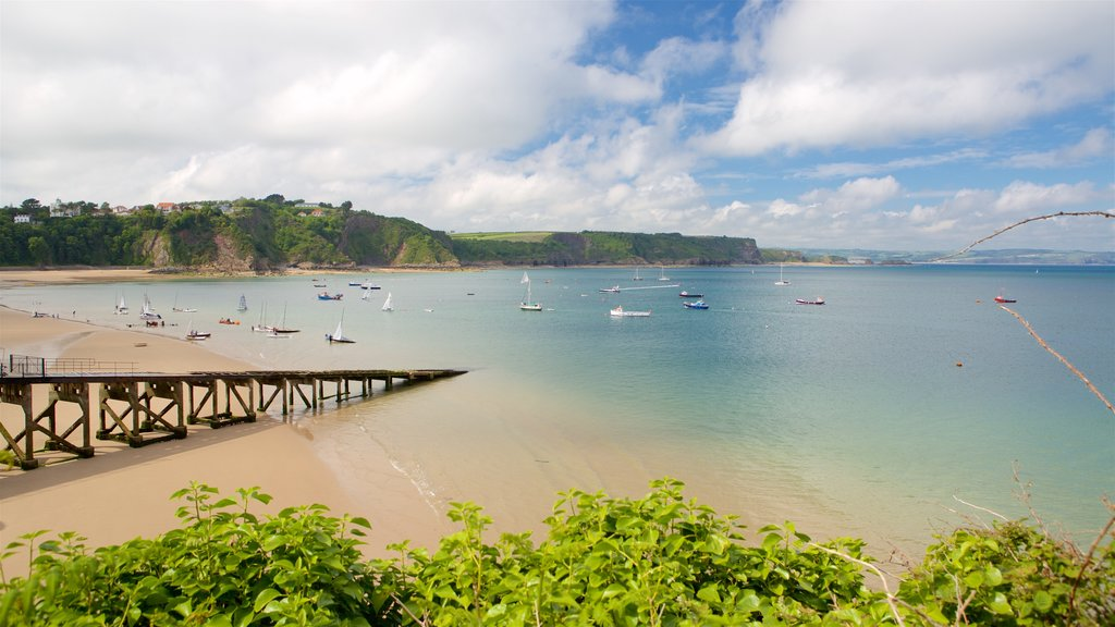 Tenby which includes a bay or harbor, rugged coastline and a sandy beach