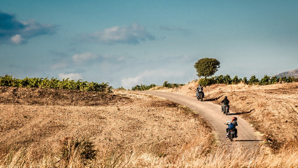 Catania showing motorbike riding and tranquil scenes as well as a small group of people