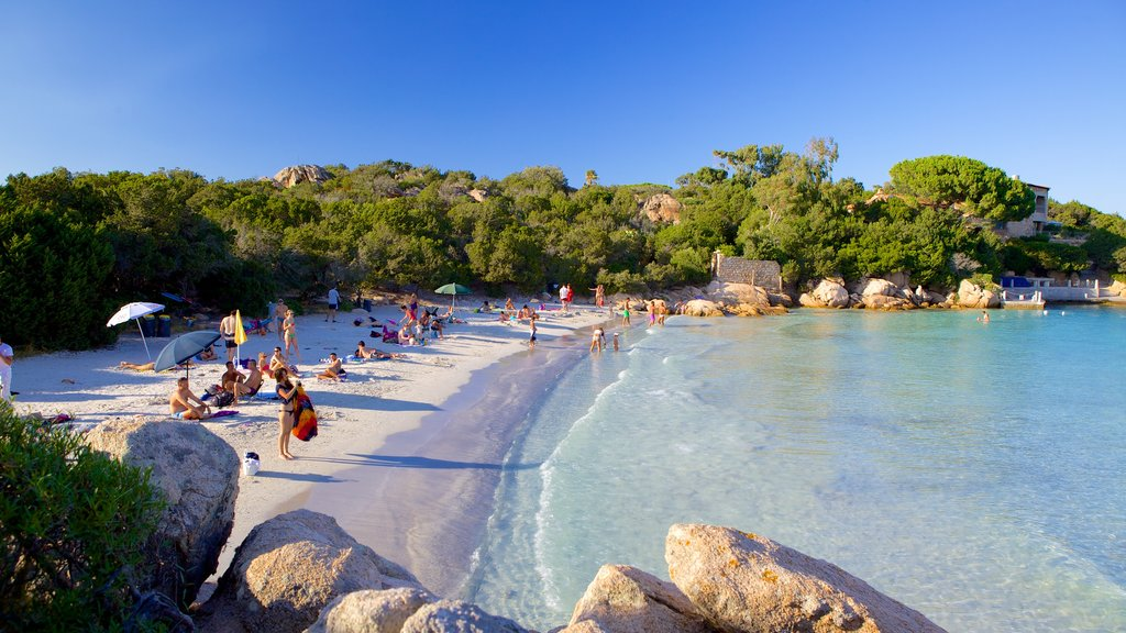 Capriccioli Beach which includes a sandy beach as well as a large group of people