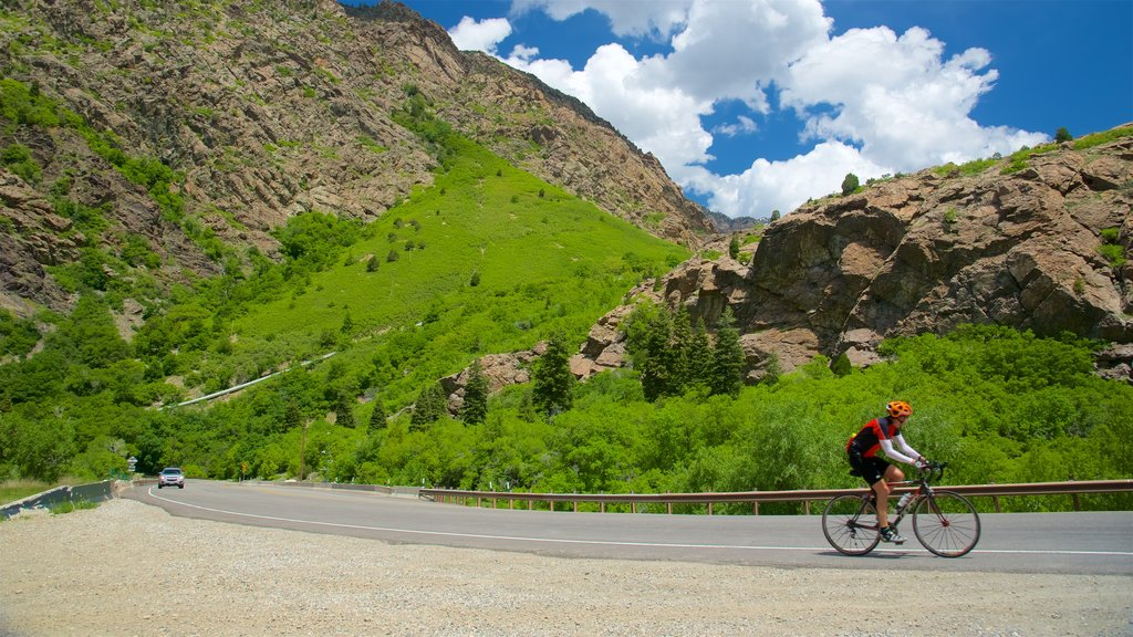 Big Cottonwood Canyon featuring tranquil scenes, mountains and road cycling