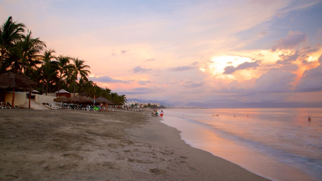 Nuevo Vallarta Beach which includes tropical scenes, general coastal views and a sunset