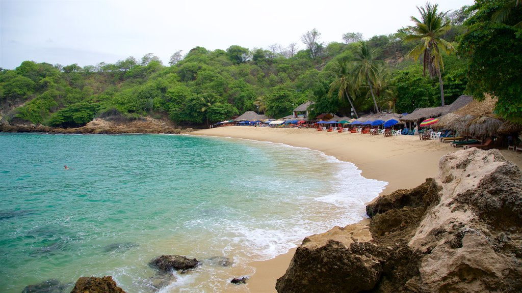 Oaxaca which includes tranquil scenes, a beach and general coastal views