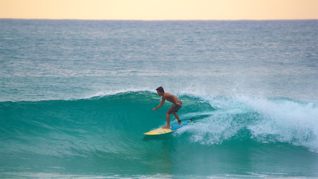 Zicatela Beach which includes a sunset, surf and surfing