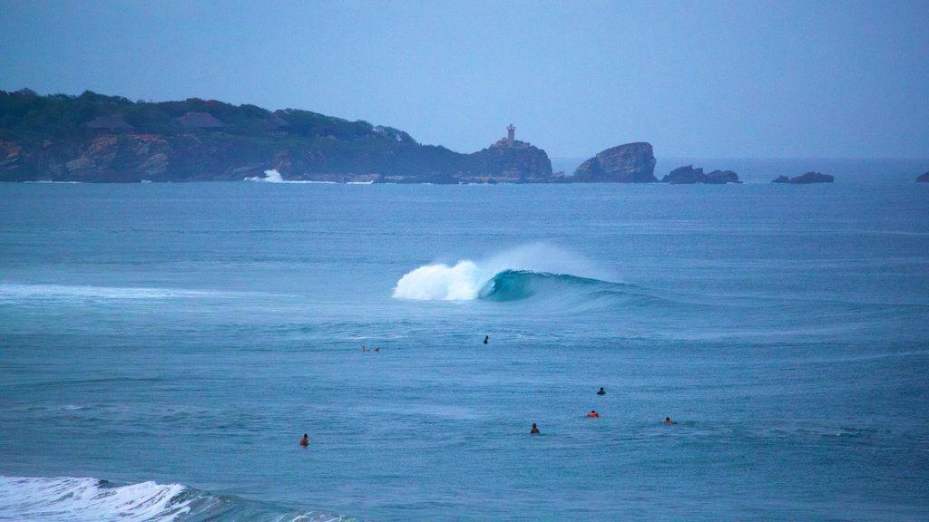 Zicatela Beach featuring surf and general coastal views