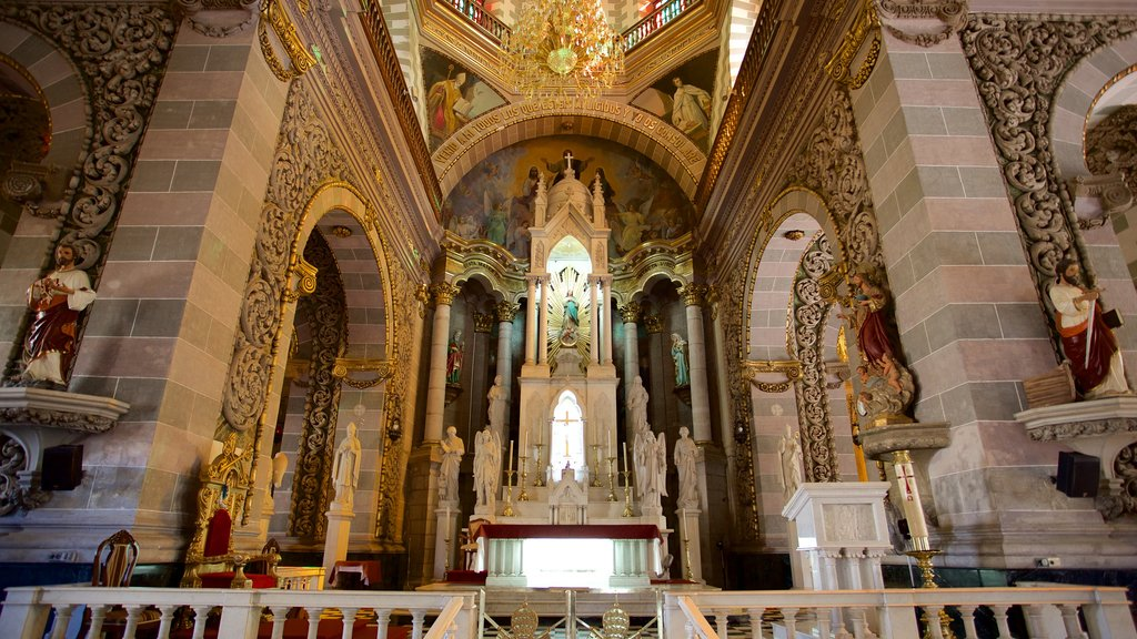 Immaculate Conception Cathedral showing a church or cathedral, interior views and heritage architecture