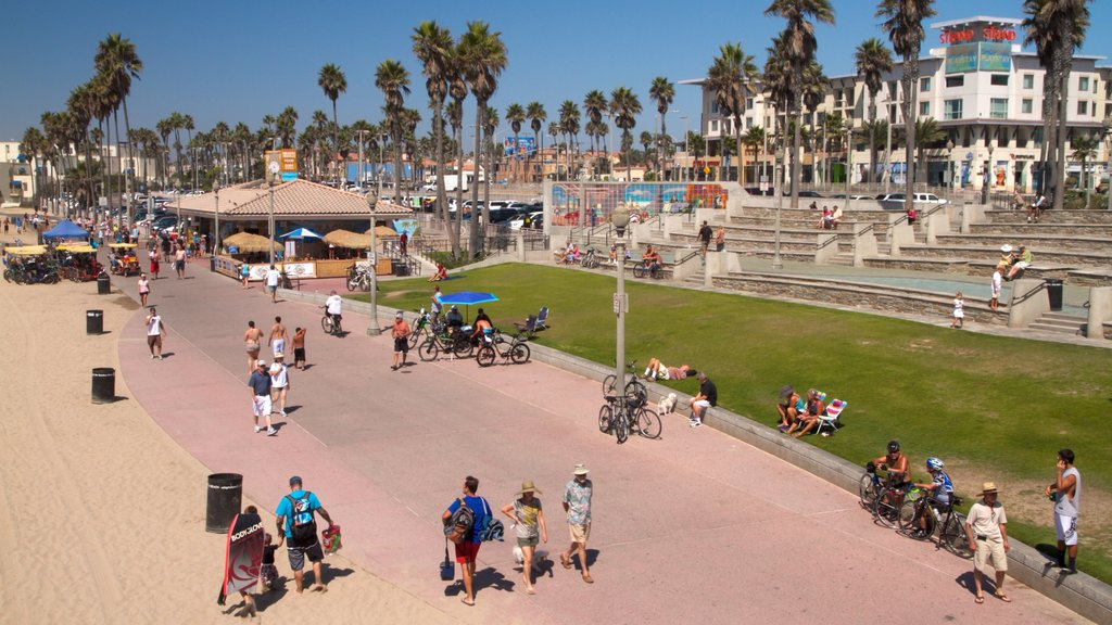 Huntington Beach showing tropical scenes, street scenes and a city