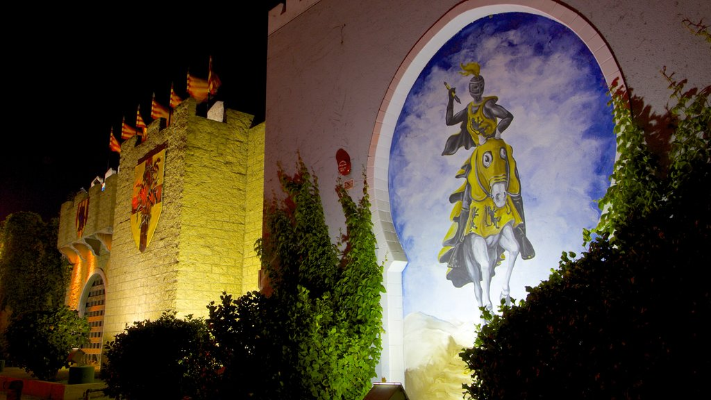 Medieval Times which includes performance art, a park and night scenes