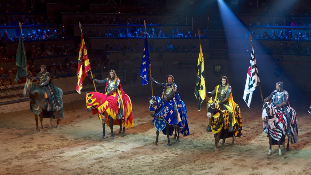 Medieval Times featuring interior views, performance art and horseriding