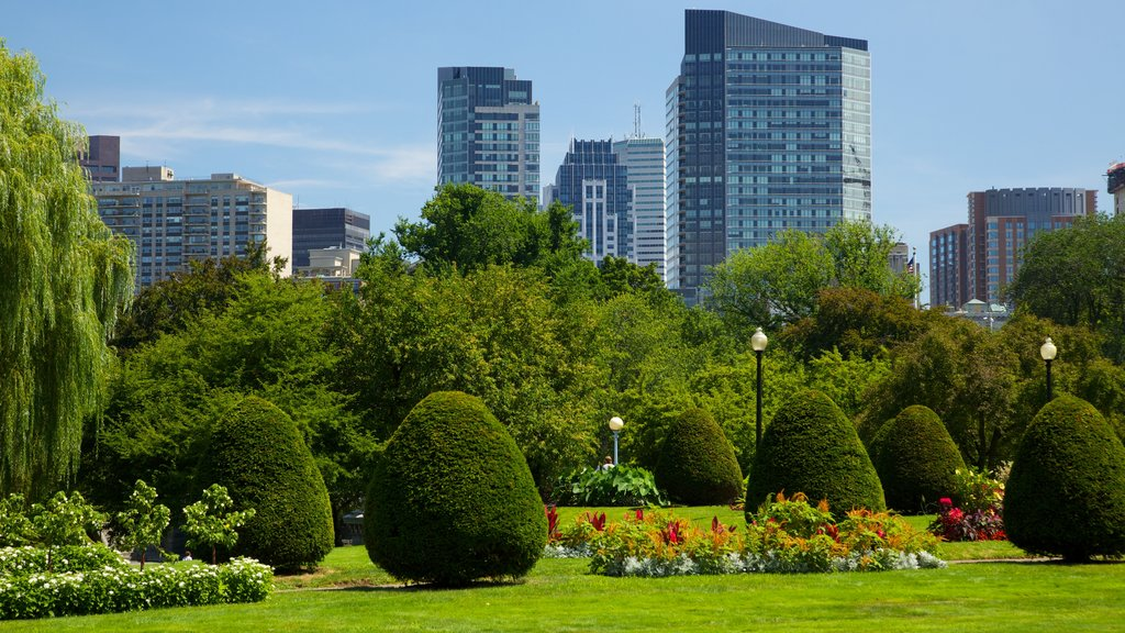 Boston Common featuring landscape views, a skyscraper and flowers