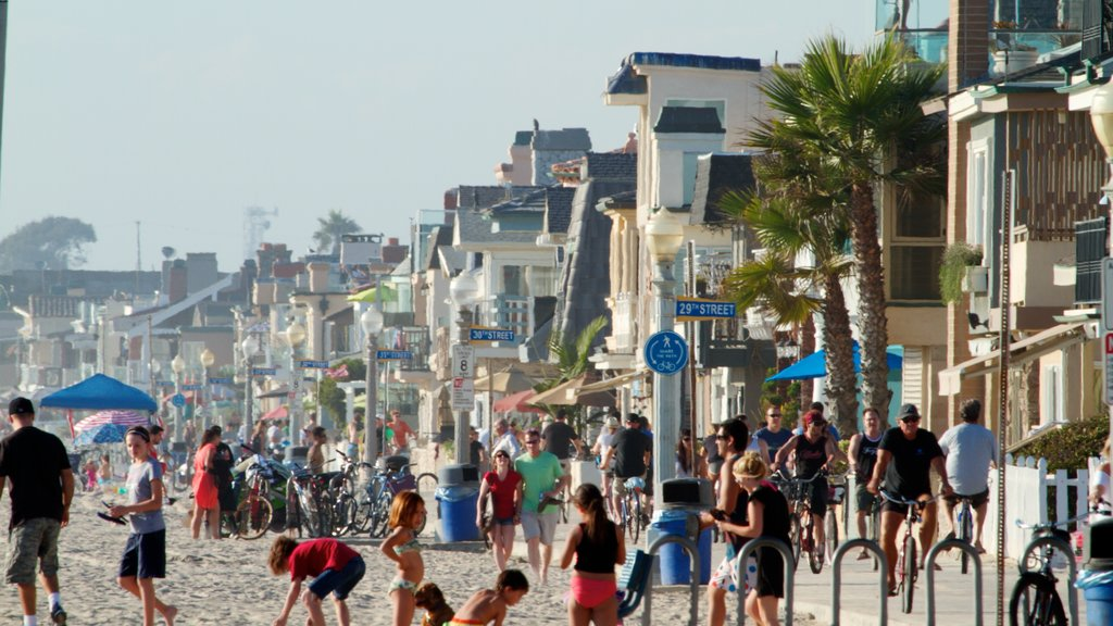 Newport Beach featuring a beach, street scenes and tropical scenes