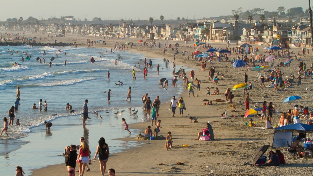 Newport Beach showing general coastal views as well as a large group of people