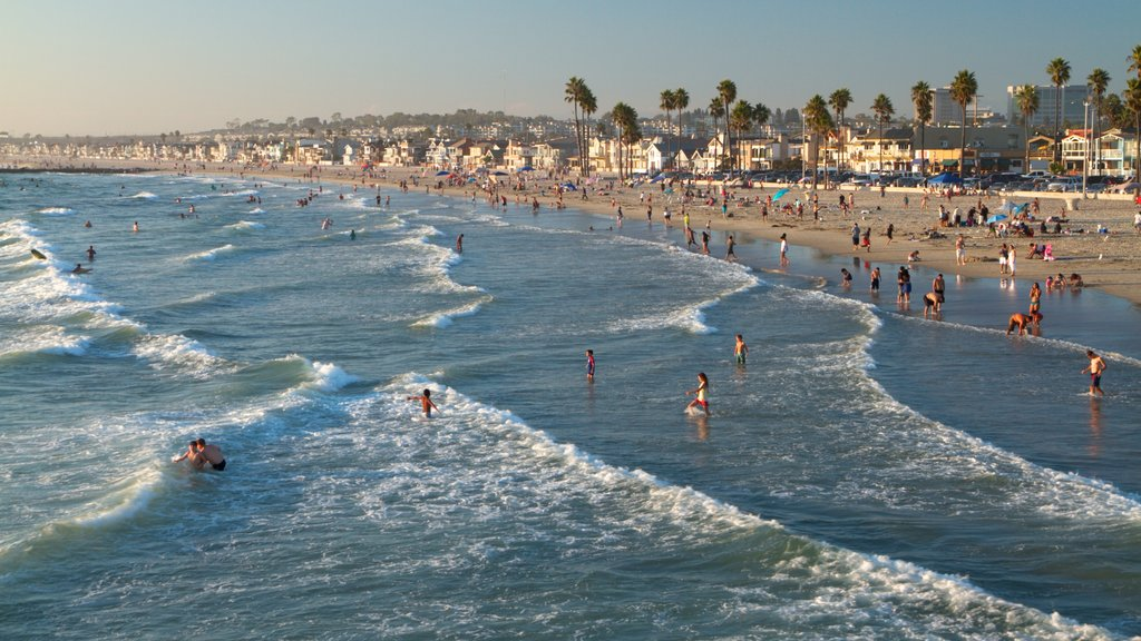 Newport Beach which includes a sandy beach, landscape views and tropical scenes