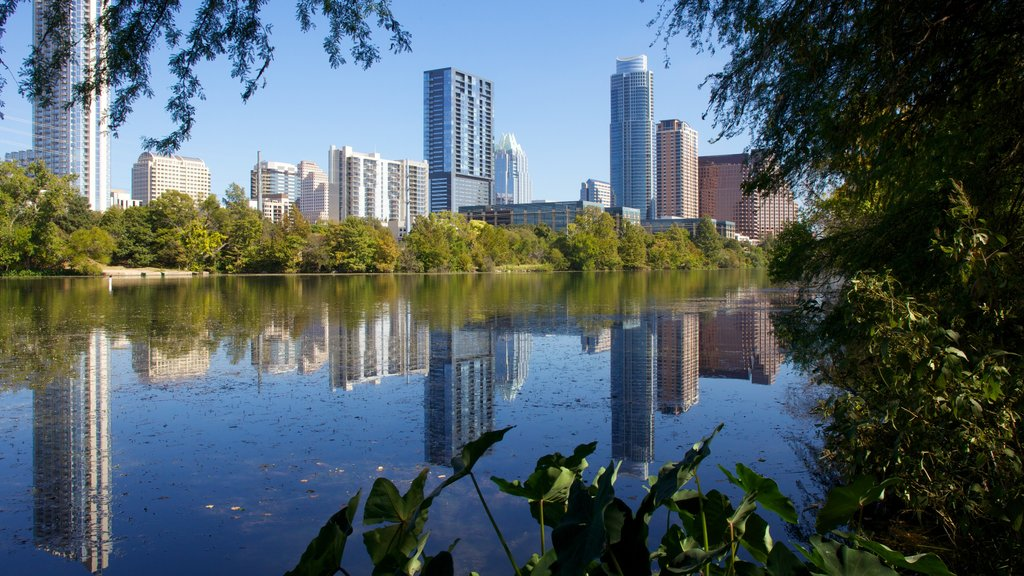 Lady Bird Lake showing landscape views, a lake or waterhole and a skyscraper