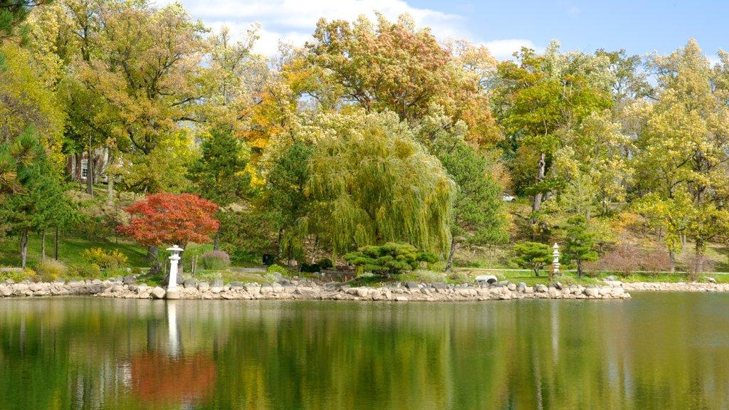 Niagara Falls mostrando un jardín, vistas de paisajes y un río o arroyo