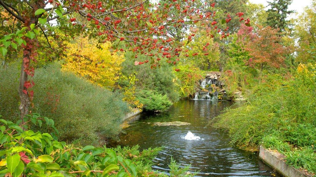 Jardín Botánico de Niagara Parks mostrando una fuente, vistas de paisajes y un estanque