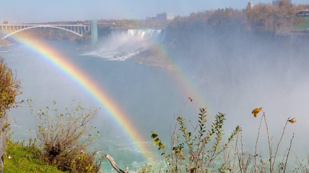 Niagara Falls que incluye vistas de paisajes, neblina o niebla y una catarata