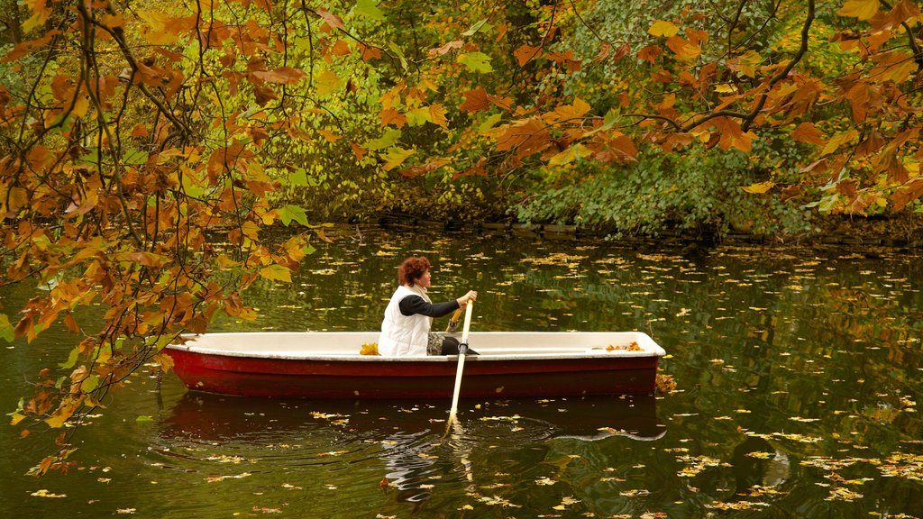 Berlin featuring a lake or waterhole, autumn leaves and kayaking or canoeing