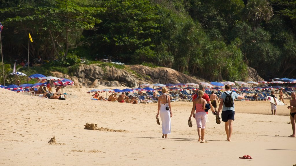 Nai Harn Beach showing landscape views, a beach and tropical scenes
