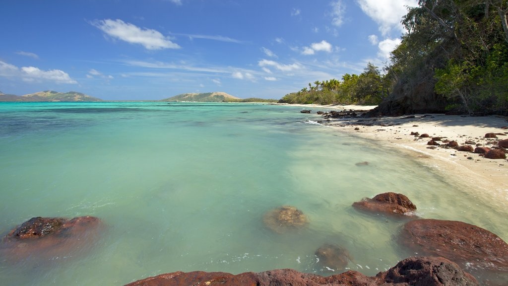 Yasawa Islands which includes landscape views, tropical scenes and a sandy beach