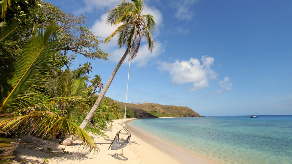 Yasawa Islands showing a sandy beach and tropical scenes