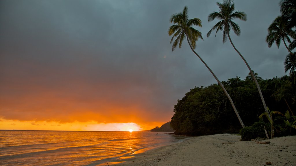 Coral Coast which includes tropical scenes, a beach and a sunset
