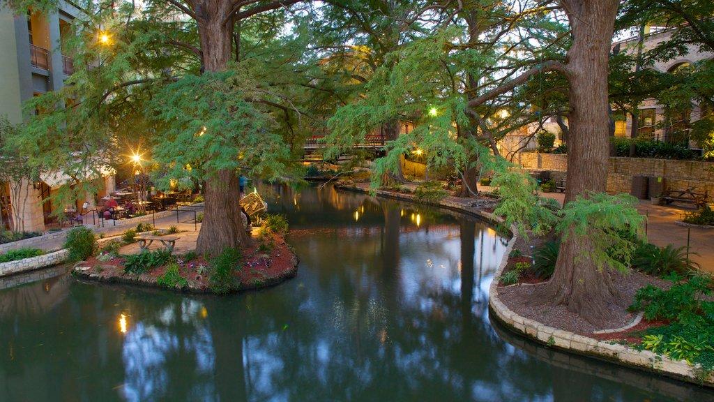 Texas featuring a garden