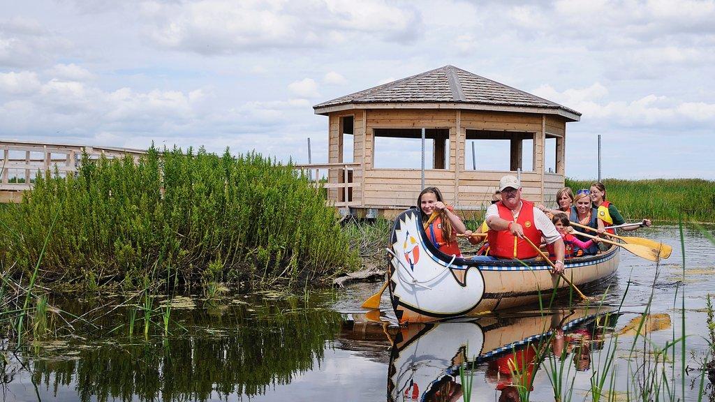 Winnipeg mostrando humedales y kayak o canoa y también una familia