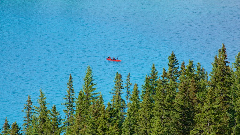 Banff National Park showing kayaking or canoeing and a lake or waterhole