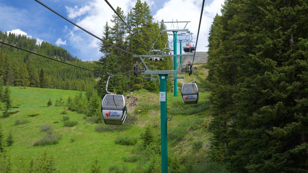 Lake Louise Gondola