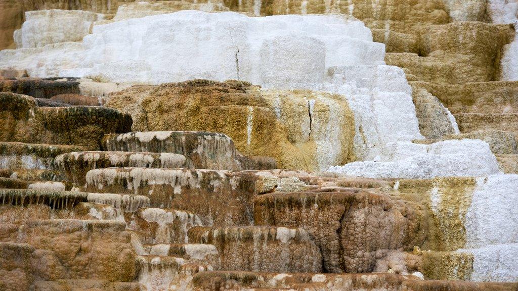 Mammoth Hot Springs mostrando una fuente termal