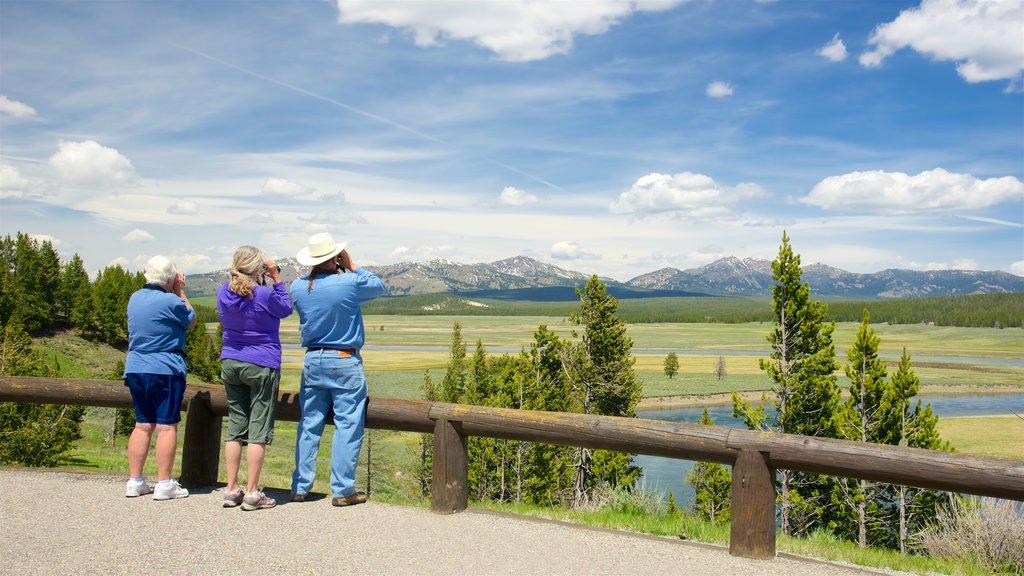 Hayden Valley mostrando vistas y escenas tranquilas y también un pequeño grupo de personas