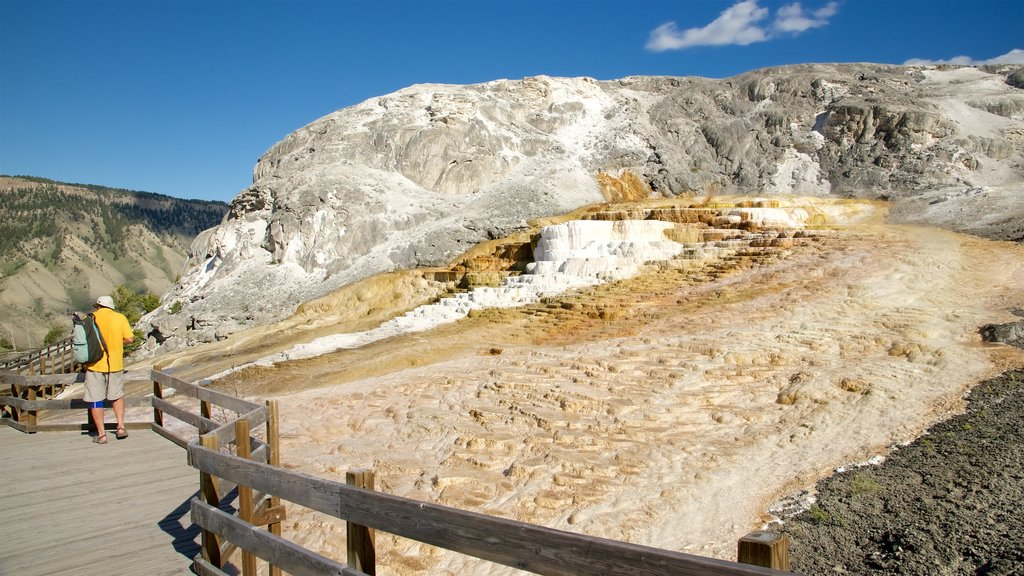 Mammoth Hot Springs que incluye una fuente termal y también un hombre