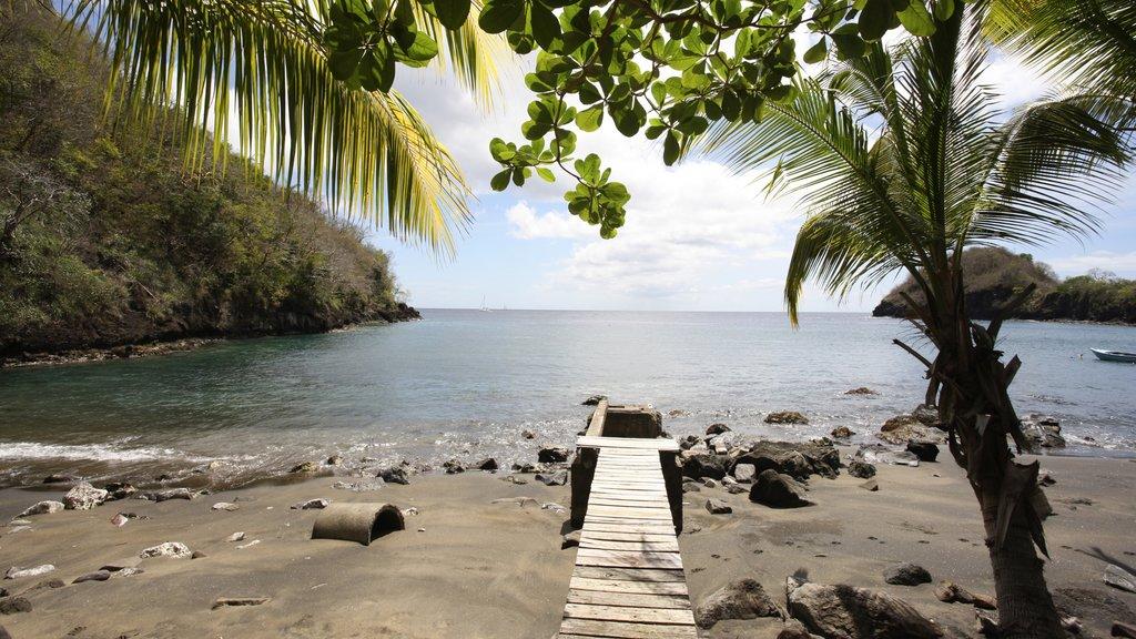 San Vicente y las Granadinas mostrando una playa, vistas generales de la costa y escenas tropicales