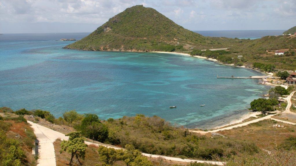 San Vicente y las Granadinas ofreciendo vistas generales de la costa y montañas