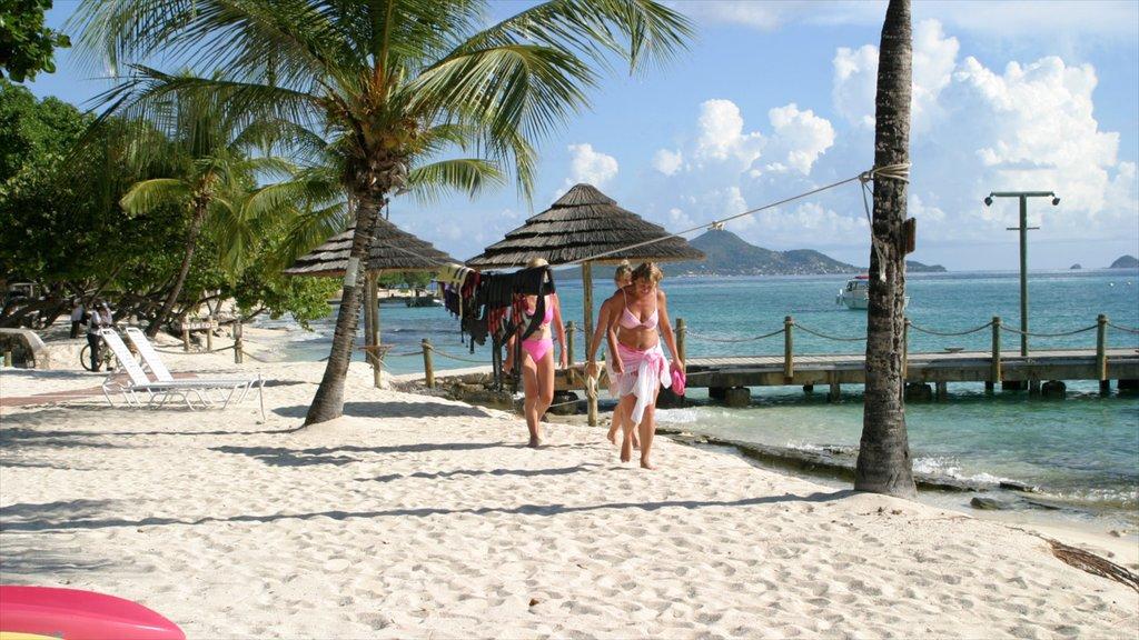 San Vicente y las Granadinas ofreciendo escenas tropicales, una playa de arena y vistas generales de la costa