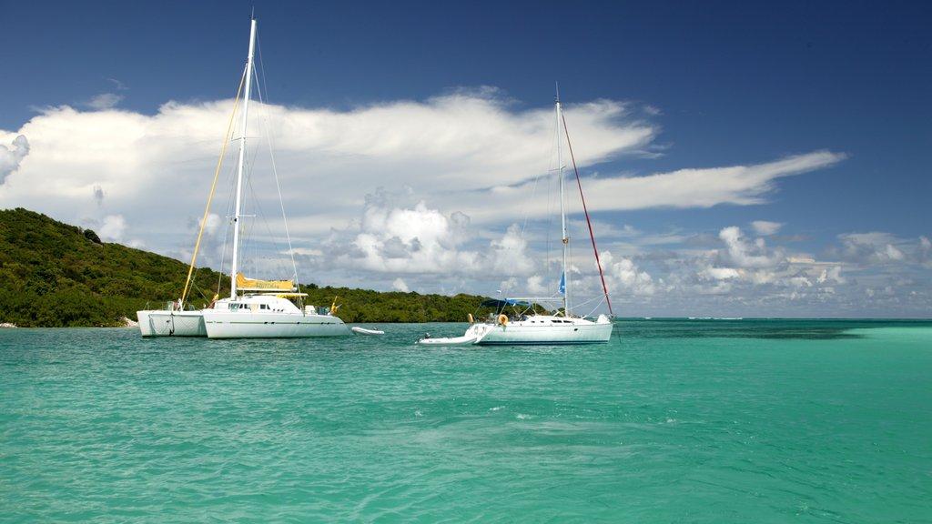 San Vicente y las Granadinas ofreciendo paseos en lancha y vistas generales de la costa
