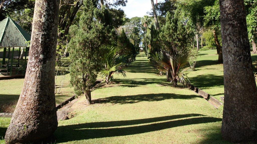 San Vicente y las Granadinas mostrando un parque