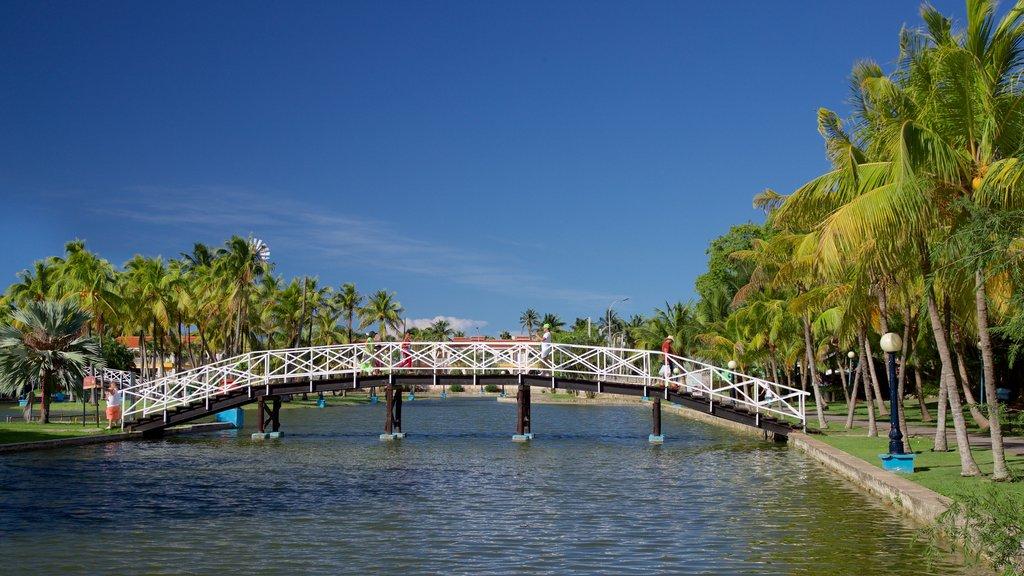 Josone Park which includes a lake or waterhole and a bridge